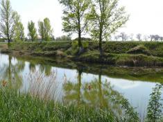 Obecné jazero-rybník pred revitalizáciou